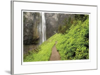 Trail To Comet Falls-Donald Paulson-Framed Giclee Print