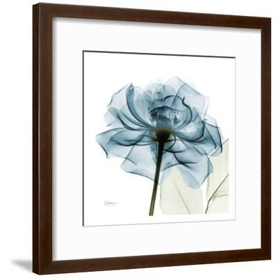 Blue Rose-Albert Koetsier-Framed Art Print
