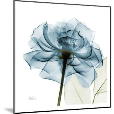 Blue Rose-Albert Koetsier-Mounted Art Print