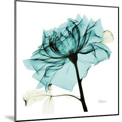Teal Rose 2-Albert Koetsier-Mounted Art Print