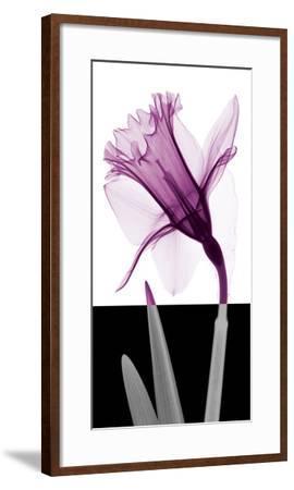 Stem IV-Steven N^ Meyers-Framed Giclee Print