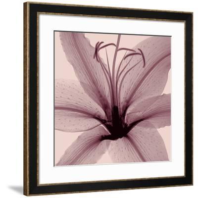 Lily-Steven N^ Meyers-Framed Giclee Print
