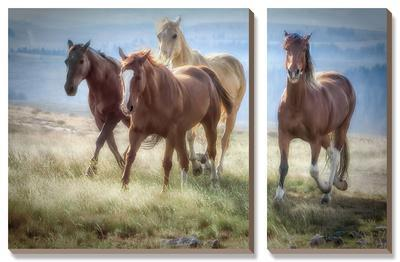 Morning Stroll-Wendy Caro-Framed Canvas Art Set