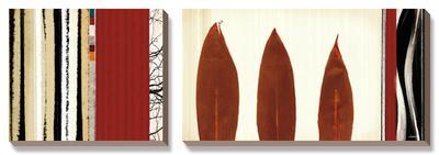 Folium I-Noah Li-Leger-Framed Canvas Art Set