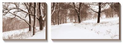 First Snow I-Mike Sleeper-Framed Canvas Art Set