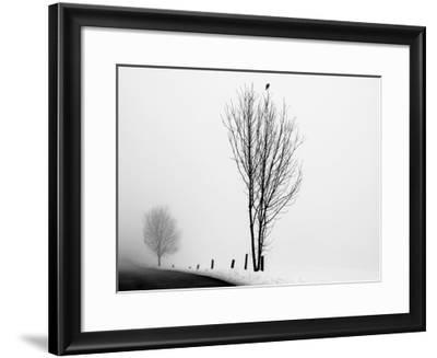 The Messenger-Ily Szilagyi-Framed Giclee Print