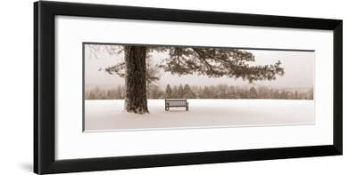 First Snow II-Mike Sleeper-Framed Giclee Print