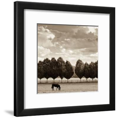 Grazing-Heather Ross-Framed Giclee Print