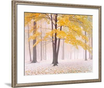 Early Autumn Snow-Jim Becia-Framed Art Print