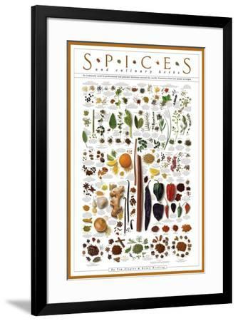 Spices and Culinary Herbs--Framed Art Print