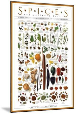 Spices and Culinary Herbs--Mounted Art Print