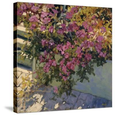 Steps and Summer Flowers-Philip Craig-Stretched Canvas Print