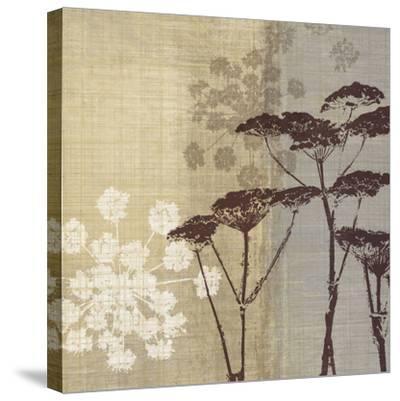Lace II-Tandi Venter-Stretched Canvas Print