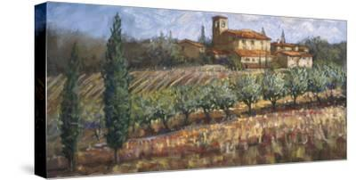 Tuscan Olives-Malcolm Surridge-Stretched Canvas Print