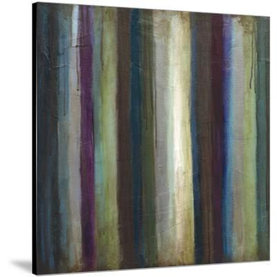 Striations I-Wani Pasion-Stretched Canvas Print