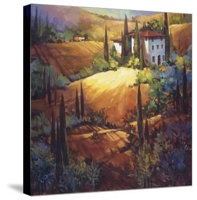 Morning Light Tuscany-Nancy O'toole-Stretched Canvas Print