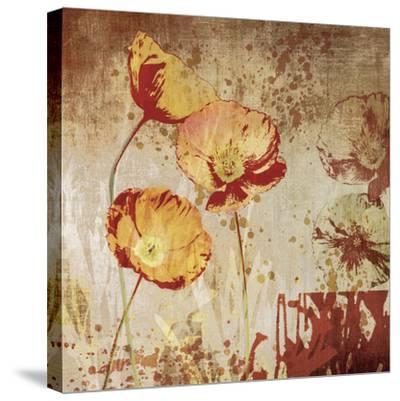 Poppy Heat II-Tandi Venter-Stretched Canvas Print