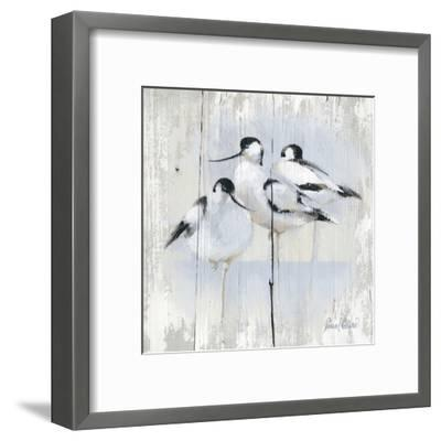 3 Oiseaux-Pascal Cessou-Framed Art Print