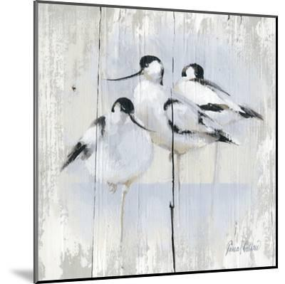 3 Oiseaux-Pascal Cessou-Mounted Art Print