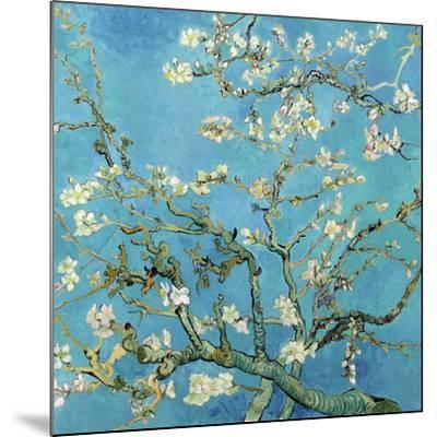 Almond Branches in Bloom, San Remy, c.1890-Vincent van Gogh-Mounted Art Print