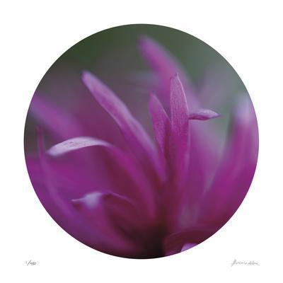 Sphere 3-Florence Delva-Framed Giclee Print
