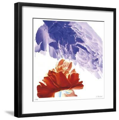 Botanical 9-Kate Blacklock-Framed Giclee Print