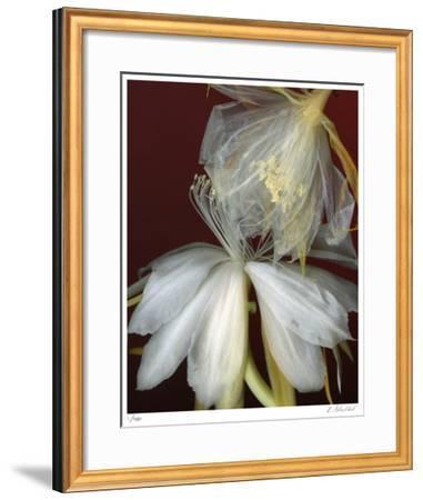 Soft Touch-Kate Blacklock-Framed Giclee Print