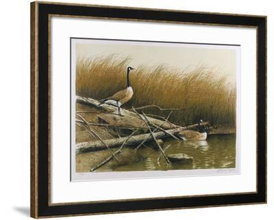 Willow Slew-Wayne Cooper-Framed Limited Edition