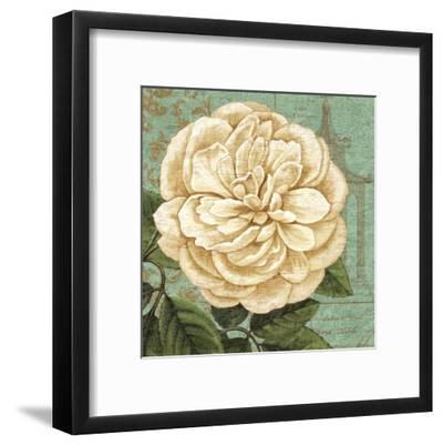 Camellia Study II-Suzanne Nicoll-Framed Art Print