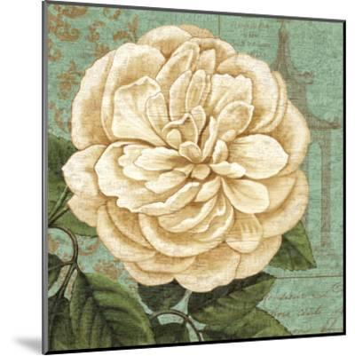 Camellia Study II-Suzanne Nicoll-Mounted Art Print