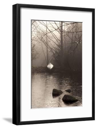 Silvered Morning Pond-Heather Ross-Framed Giclee Print