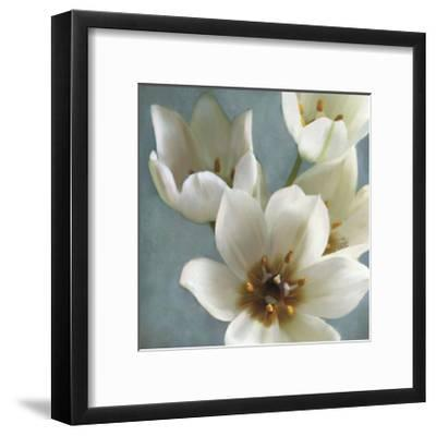 Lily Parfait II-Janel Pahl-Framed Giclee Print