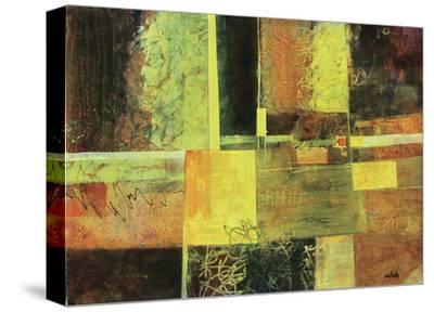 577-Lisa Fertig-Stretched Canvas Print