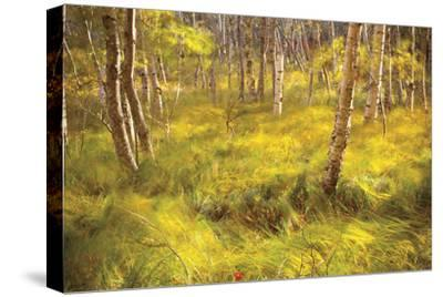 Whispering Grass-Michael Hudson-Stretched Canvas Print