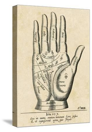 Palmistry: Palm Diagram--Stretched Canvas Print