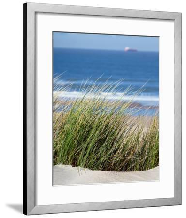 Elyme des sables-Matthias Weber-Framed Art Print