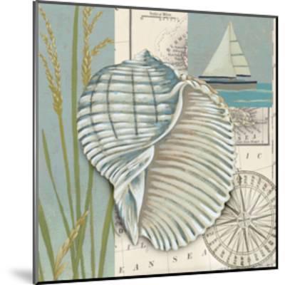 Seaside Shell I-Chariklia Zarris-Mounted Art Print
