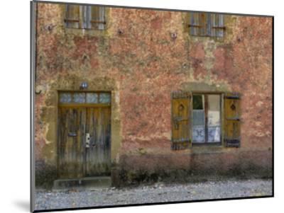 Lupiac House III-Colby Chester-Mounted Art Print