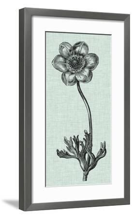 Celadon Beauty IV-Vision Studio-Framed Giclee Print