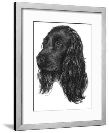 Canine Study IV-Ethan Harper-Framed Giclee Print
