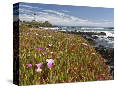 Pigeon Point 1-Michael Polk-Stretched Canvas Print