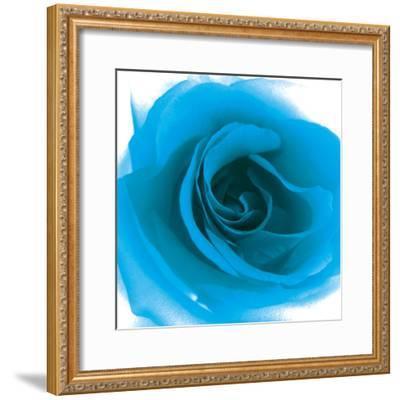 Blue Summer Petals-Katja Marzahn-Framed Giclee Print