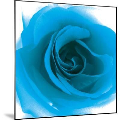 Blue Summer Petals-Katja Marzahn-Mounted Giclee Print