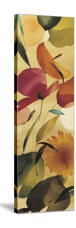 Fiesta Primaveral II-Lola Abellan-Stretched Canvas Print