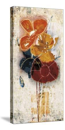 Floral Scents I-Robert Lacie-Stretched Canvas Print