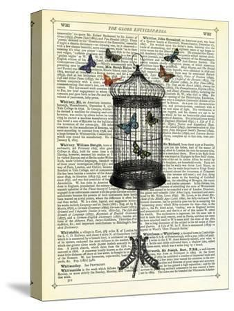 Bird Cage & Butterflies-Marion Mcconaghie-Stretched Canvas Print