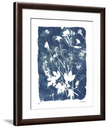 Garden Shadow 2-Lois Bender-Framed Giclee Print
