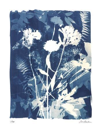 Garden Shadow 4-Lois Bender-Framed Giclee Print