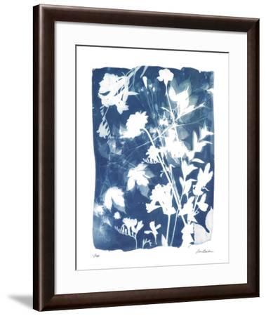 Garden Shadow 5-Lois Bender-Framed Giclee Print