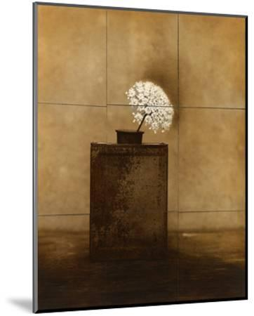 Dark Vessel-Jan Gauthier-Mounted Art Print
